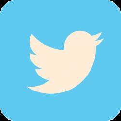 twitter-social-medias-community-management-web-content-tooap